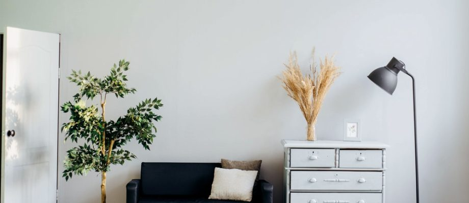 Ways That You Can Make Your House Healthy and Safe